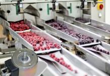 Kuhnke magneten worden in de foodsector onder meer toegepast in transport- en sorteersystemen voor fruit